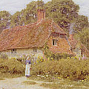 Sunflowers By Helen Allingham Art Print