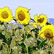 Sunflowers Sunbathing Art Print