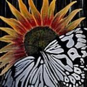 Sunfly Art Print