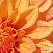 Sunglow Art Print
