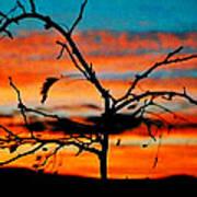 Sunset In Nevada Art Print