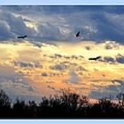 Sunset Of The Hawks Art Print
