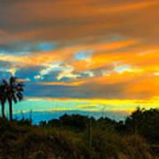 Sunset Palm Folly Beach  Art Print by Jenny Ellen Photography