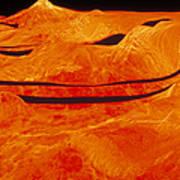 Surface Of Venus Art Print