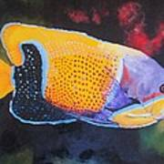 Sutton Fish Art Print by Terry Gill