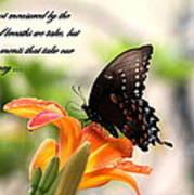 Swallowtail Card Art Print