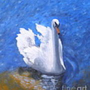 Swan Lake Art Print by Julie Sauer