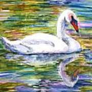 Swan Summer Art Print