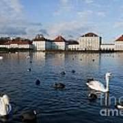 Swans Seen At Nymphenburg Palace Art Print