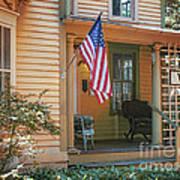 Swedish American Home Art Print