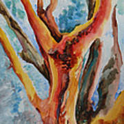 Symphony Of Branches Art Print