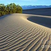 Symphony Of The Sand Art Print