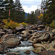 Tahoe Creek Art Print