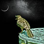 Talking To The Moon Art Print