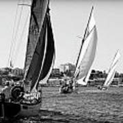 Tall Ship Races 2 Art Print