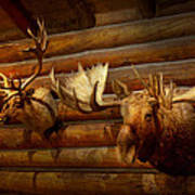 Taxidermy - The Hunting Lodge  Art Print