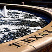 Tcu Frog Fountain Art Print