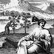 Tea: Treatise, 1687 Art Print