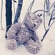 Teddy In Snow Art Print