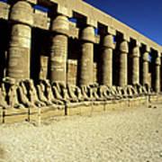Temple Of Karnak, Luxor - Egypt Art Print