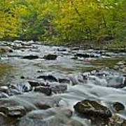 Tennessee Stream 6031 Art Print