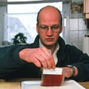 Testing For Bacteria Print by Volker Steger