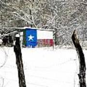 Texas Snow Art Print