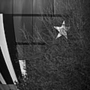 Texas Star Art Print