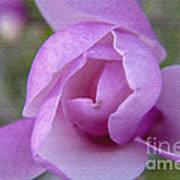 Textured Flowerr Art Print