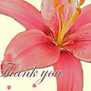 Thank You Card - Pink Lily Art Print