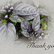 Thank You Card - Silver Leaves And Berries Art Print