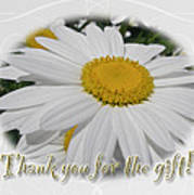Thank You For The Gift Greeting Card - White Daisy Art Print