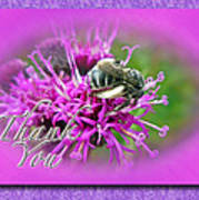 Thank You Greeting Card - Bumblebee On Ironweed Art Print