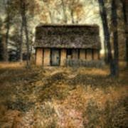 Thatched Roof Cottage In The Woods Art Print