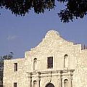 The Alamo San Antonio Texas Art Print