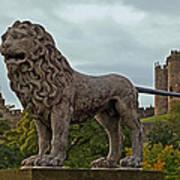 The Alnwick Lion Art Print