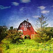 The Amish House Art Print