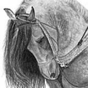 The Andalusian  Art Print