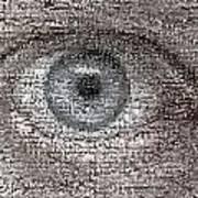 The Artist's Eye Art Print