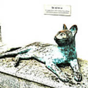 The Asian Civilisations Museum Cat Art Print