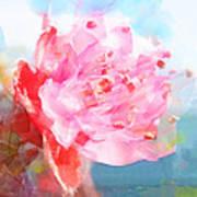 The Aura Of A Peach Blossom Art Print