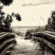 The Beach Path - Clearwater Beach Art Print
