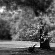 The Bench In The Park Art Print