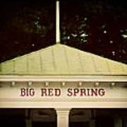 The Big Red Spring Art Print by Lisa Russo