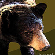The Black Bear Art Print