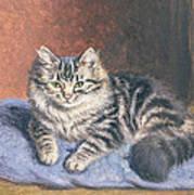The Blue Cushion Art Print