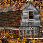The Boathouse At The Manse Art Print by Tricia Marchlik
