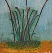 The Bog Pond Art Print