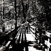 The Bridge Shadow Art Print