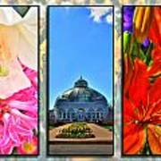 The Buffalo And Erie County Botanical Gardens Triptych Series Art Print